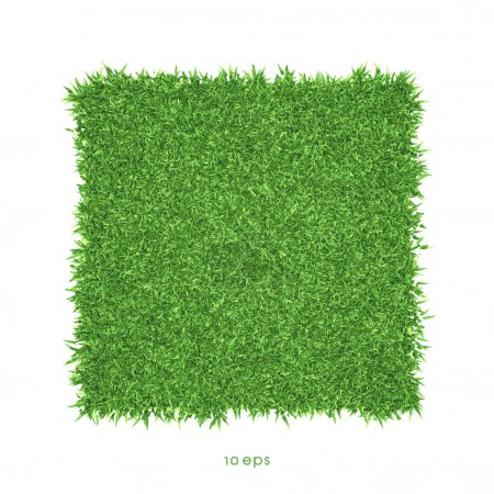 Illustration for Vector - Green grass background illustration - Royalty Free Image
