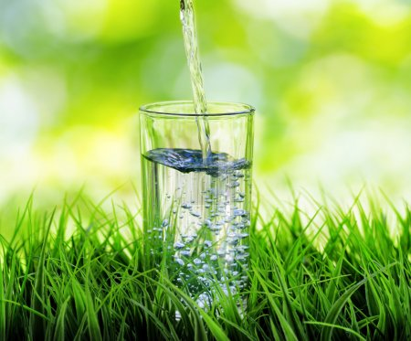 Photo for Glass of water on nature background. - Royalty Free Image