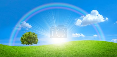 Photo for Panorama of green field with a big tree and rainbow in blue sky - Royalty Free Image