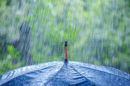 Photo pour Parapluie et la pluie tombe closeup - image libre de droit