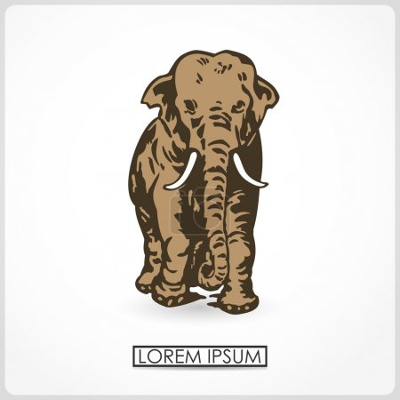 Vector illustration of An elephant cow standing isolated