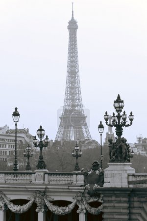 The bridge of Alexander in the background of the Eiffel Tower.