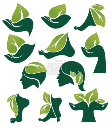 Illustration for Vector collection of ecological and natural beauty symbols and signs - Royalty Free Image