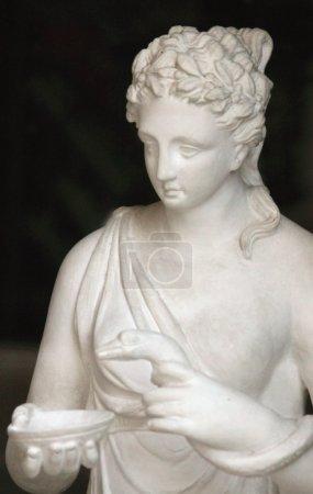 Photo pour Concert de la déesse. dans la mythologie grecque est la déesse qui donne aux gens la santé. la déesse est la fille du Dieu de la médecine Asclépios et son épouse Michelle. elle a été dépeint comme une jeune femme, a donné la coupe un serpent, qui est considéré comme le symbo - image libre de droit