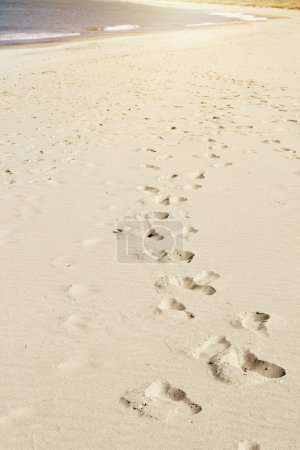 Photo for Foot prints in sand at beach - Royalty Free Image