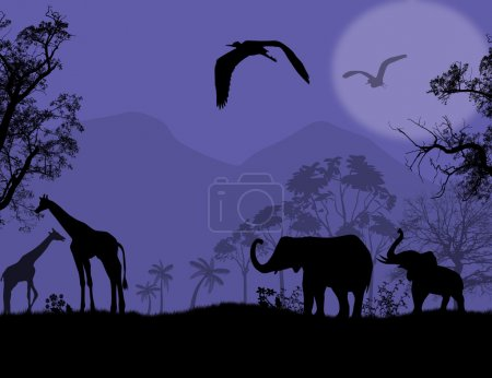 Illustration for African wildlife at blue sunset, with elephants and giraffe, vector illustration - Royalty Free Image
