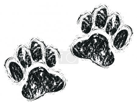 Dog paws background...