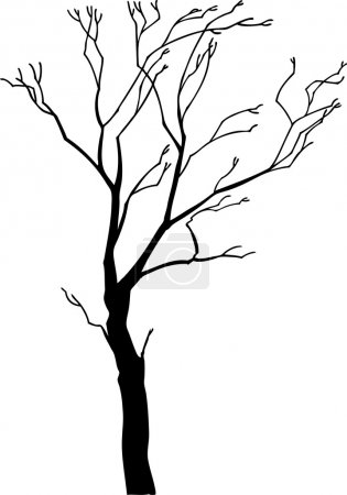 Illustration for Tree vector - Royalty Free Image