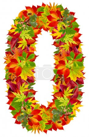 Photo for Number 0 made from autumn leaves, isolated on white - Royalty Free Image