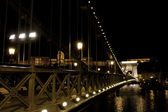 The Chain Bridge in Budapest at night. Sightseeing in Hungary.