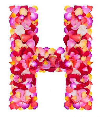 Buchstabe h aus bunten Blütenblättern