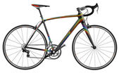 Sportiv bicycle