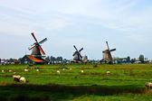 Holandské větrné mlýny Nizozemska