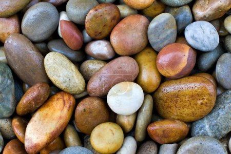 Photo pour Fond humide de pierres colorées - image libre de droit