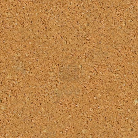 Seamless Detailed Biscuit Texture