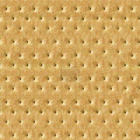 Seamless Detailed Salty Cracker Close-Up Texture