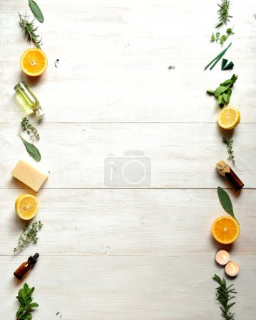 Citrus fruits,herbs and aromatherapy supplies.frame