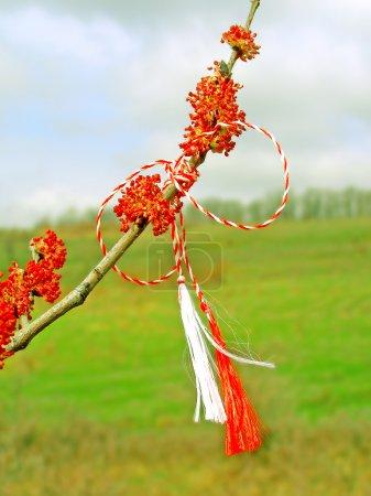 Martisor - romanian symbol of the beginning of spring.
