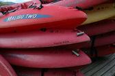Pink Kayaks - Urauchi River, Iriomote Island, Okinawa, Japan