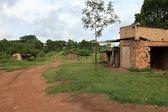 """Постер, картина, фотообои """"удаленной западной части Уганды"""""""