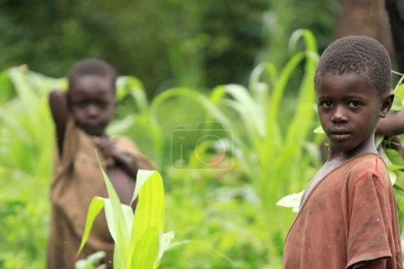 Photo pour Région reculée non touchée de l'ouest de l'Ouganda, Afrique - image libre de droit