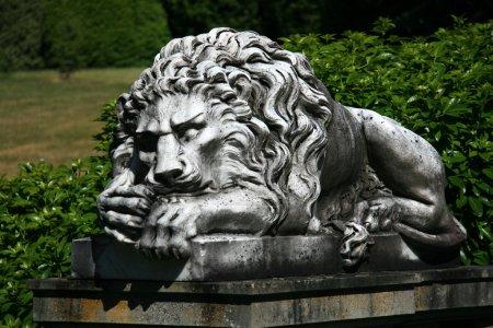 Stone Lion Statue - Hatley Castle, Victoria, BC, Canada