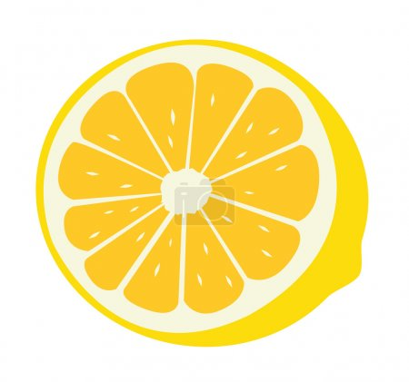 Illustration for Fresh lemon a vector illustration - Royalty Free Image