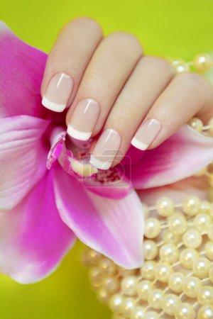 Photo pour Français manucure sur fond vert avec une orchidée et perles. - image libre de droit
