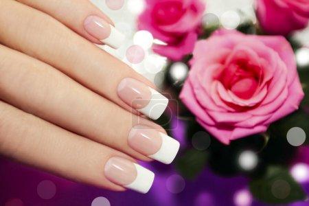 Photo pour Manucure classique de Français sur la main d'une femme avec des roses roses . - image libre de droit