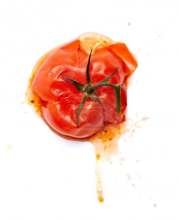 Photo for Close up of a splattered tomato on white background - Royalty Free Image