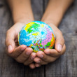 A person holding a globe on wooden background....
