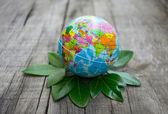 Világ környezet fogalma