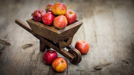 Photo for Red Apples in a miniature wheelbarrow on wood background - Royalty Free Image