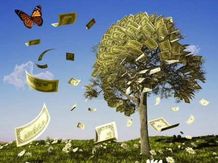 Money tree on grass with daisies....