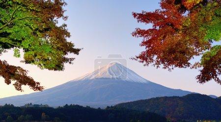 Mt. Fuji Panorama