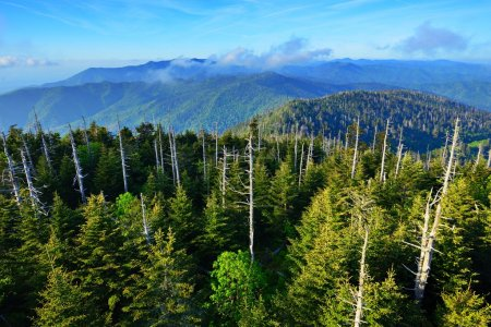Photo for View from the observation deck of Clingman's Dome in the Great Smoky Mountains. - Royalty Free Image