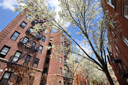 Apartments in the Spring