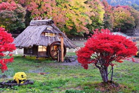 Huts and fall foliage