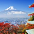 Mt. Fuji with fall colors in japan....