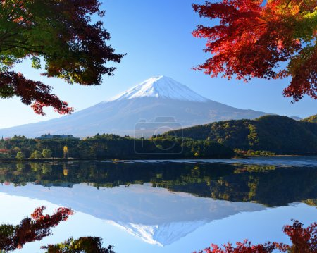 Mt. Fuji in the Autumn