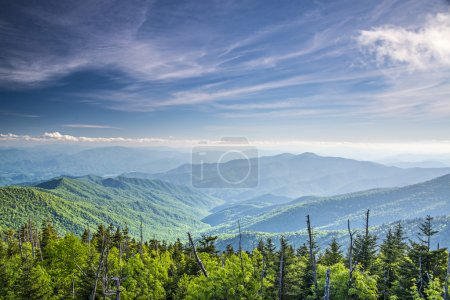 Photo for View from Clingman's Dome in the Great Smoky Mountains National Park near Gatlinburg, Tennessee. - Royalty Free Image
