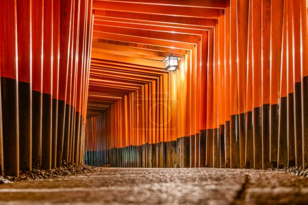 Fushimi Inari Taisha Shrine torii gates in Kyoto, ...