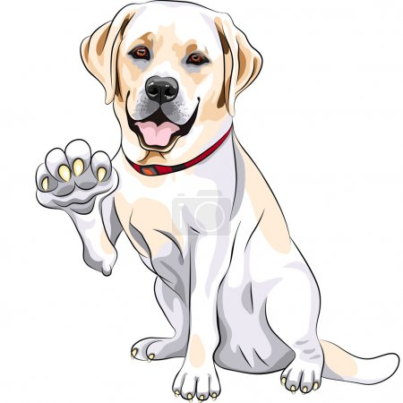 Vector dog Labrador Retriever cheerful smiles and gives a paw