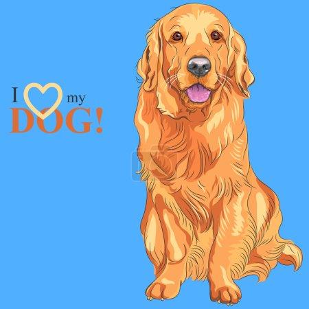 Vector dog breed Golden Retriever