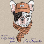 Hipster dog French Bulldog breed in a brown cap and scarf