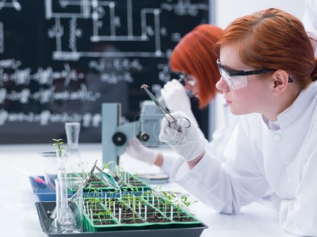 student analyzing in a chemistry lab
