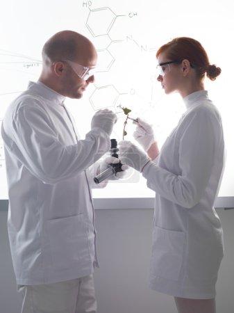 plant laboratory analysis