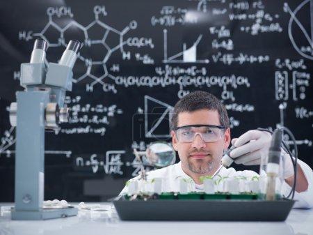 man lab plant experiment