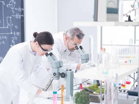 lab analysis under microscope