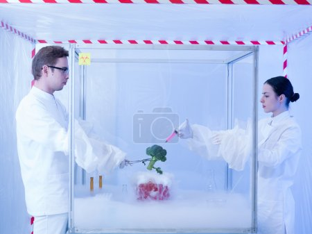 experimenting on vegetables with liquid nitrogen